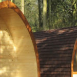 Timber1900